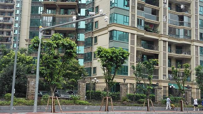 重庆红绿灯:锦程路工程